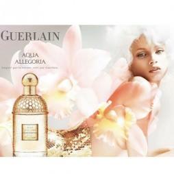 Aqua Allegoria Cherry Blossom Guerlain / Герлен Аква Аллегория Цветущая вишня. Парфюмерная вода (eau de parfum - edp) и туалетные духи (parfum de toilette) женские