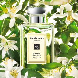 Orange Blossom Jo Malone
