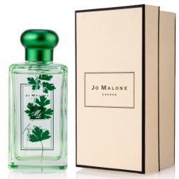Jo Malone Wild Strawberry and Parsley